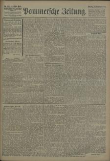 Pommersche Zeitung : organ für Politik und Provinzial-Interessen. 1906 Nr. 224