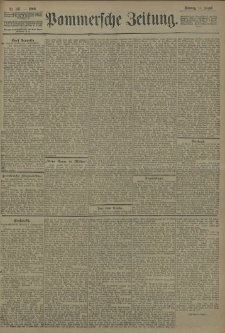 Pommersche Zeitung : organ für Politik und Provinzial-Interessen. 1908 Nr. 195