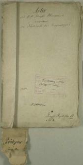 Die Duplicate des Kirchenbuchs von Prütznow
