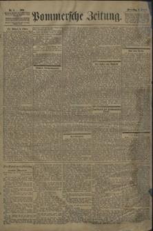 Pommersche Zeitung : organ für Politik und Provinzial-Interessen. 1901 Nr. 8