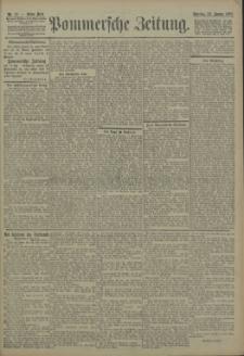 Pommersche Zeitung : organ für Politik und Provinzial-Interessen. 1905 Nr. 19 Blatt 1