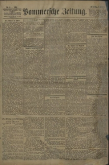 Pommersche Zeitung : organ für Politik und Provinzial-Interessen. 1901 Nr. 30