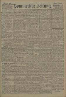 Pommersche Zeitung : organ für Politik und Provinzial-Interessen. 1905 Nr. 43 Blatt 1
