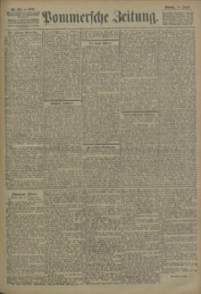 Pommersche Zeitung : organ für Politik und Provinzial-Interessen. 1906 Nr. 193 Blatt 1