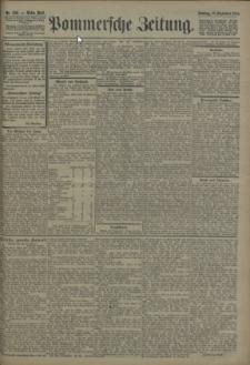 Pommersche Zeitung : organ für Politik und Provinzial-Interessen. 1906 Nr. 232