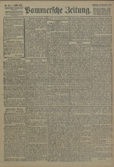 Pommersche Zeitung : organ für Politik und Provinzial-Interessen. 1906 Nr. 304