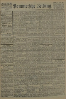 Pommersche Zeitung : organ für Politik und Provinzial-Interessen. 1907 Nr. 65 Blatt 1
