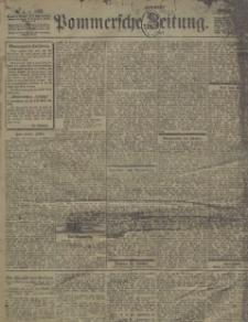 Pommersche Zeitung : organ für Politik und Provinzial-Interessen. 1902 Nr. 4