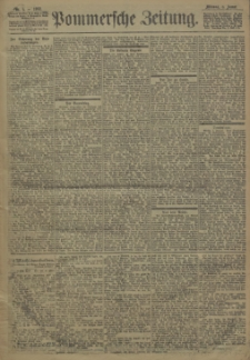 Pommersche Zeitung : organ für Politik und Provinzial-Interessen. 1902 Nr. 18