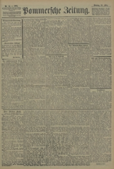 Pommersche Zeitung : organ für Politik und Provinzial-Interessen. 1905 Nr. 93