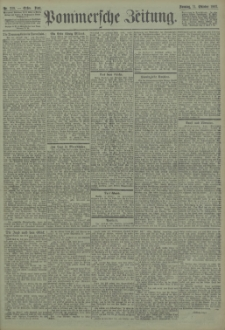 Pommersche Zeitung : organ für Politik und Provinzial-Interessen. 1903 Nr. 239 Blatt