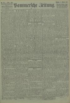 Pommersche Zeitung : organ für Politik und Provinzial-Interessen. 1903 Nr. 242