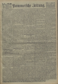 Pommersche Zeitung : organ für Politik und Provinzial-Interessen. 1904 Nr. 196 Blatt 1
