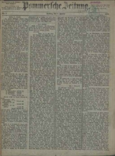 Pommersche Zeitung : organ für Politik und Provinzial-Interessen. 1875 Nr. 81
