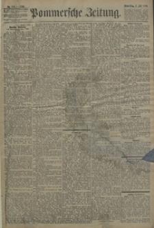 Pommersche Zeitung : organ für Politik und Provinzial-Interessen. 1896 Nr. 198
