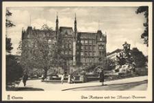 Stettin, Das Rathaus und der Manzel-Brunnen
