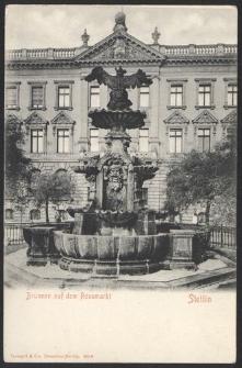 Stettin, Brunnen auf dem Rossmarkt