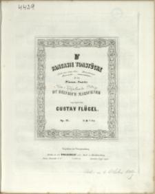 IV Fantasie Tonstücke : für das Piano-Forte : Op. 25 No 3, Humoristische Metamorphosen
