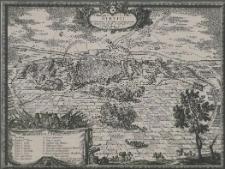Delineatio Obsidionis Urbis Stetini in Pomerania a Cesareanis et Confoederatis incaeptae [...] 15 Novemb. Anni 1659.