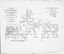 Stammbaum des angesehenen Borkischen Geschlechtes, und zwar I. Regenwald- und Strammehlscher Linie. Des Herrn General Grafen von Borcke, Hochgeb. [...] denen übrigen Gliedern dieses hohen Hauses [...]
