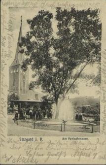 Stargard in Pommern, Am Springbrunnen