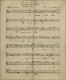 Osanna filio David (Gemischter Chor)