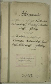 Die Duplicate des Kirchenbuchs von Neukirchen, Natzmersdorff, Premslaff, Muehlendorf und Glietzig