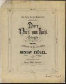 Durch Nacht zum Licht : Adagio für Orgel : als Nachspiel wie zum Concertvortrag : Op.113
