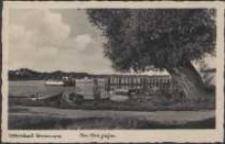 Ostseebad Dievenow, An der Fähre