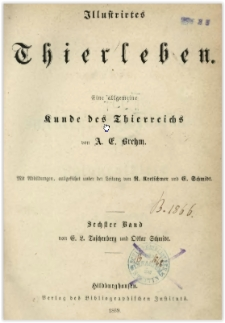 Illustrirtes Thierleben : eine allgemeine Kunde des Thierreichs. Bd. 6, Insekten, Tausendfüssler und Spinnenthiere