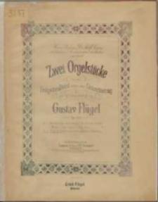 Zwei Orgelstücke : zum Festgottesdienst sowie zum Concertvortrag : Op. 102 Nr. 2, Fuge in E moll mit vorausgehender Einleitung