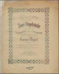 """Zwei Orgelstücke :zum Festgottesdienst sowie zum Concertvortrag : Op. 102. Nr. 1, Praeludium zum Choral: """"Du dessen Augen flossen"""" aus Graun's Tod Jesu"""