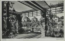 Stettin, Rosengarten
