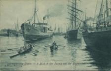 Das malerische Stettin, 9 Blick in den Dunzig von der Baumbrücke