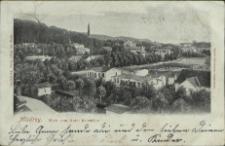 Misdroy, Blick vom Hotel Belvedere