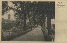 Pyritz, Wallpromenade mit Pulverturm