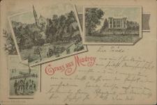 Gruss aus Misdroy, Kurpark und Kirche, Dünenschloss
