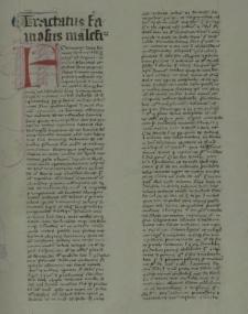 Tractatus famosus maleficiorum