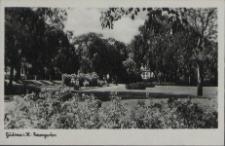 Güstrow in Mecklenburg, Rosengarten