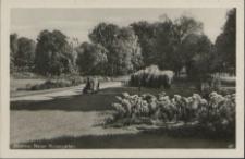 Güstrow, Neuer Rosengarten